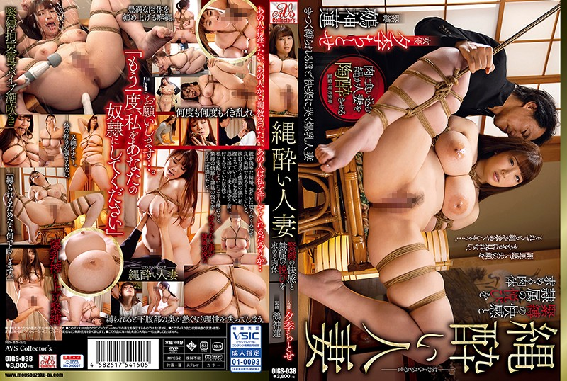 OIGS-038